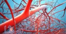 درمان سالانه ۱۰ هزار سیکل درمان ناباروری